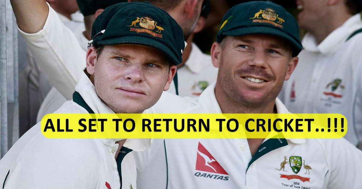 David Warner to make grade cricket return